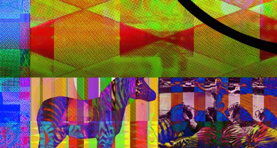 ZebraStripes_Detail